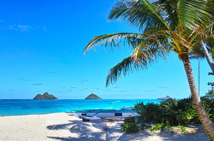 ハワイのビーチの画像