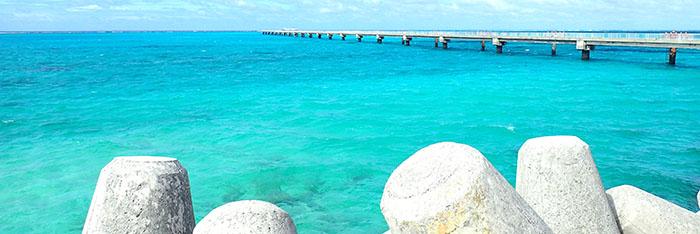 沖縄の画像