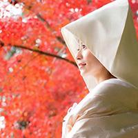 京都の和装イメージ